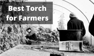 Best Torch for Farmers